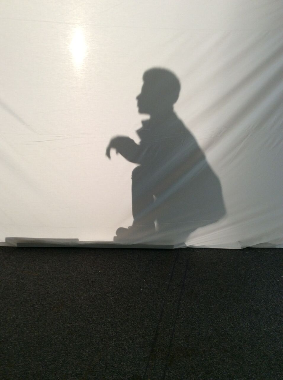 Finesse's silhouette